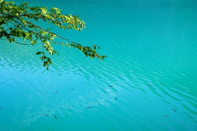 De wonderlijke Plitvice meren