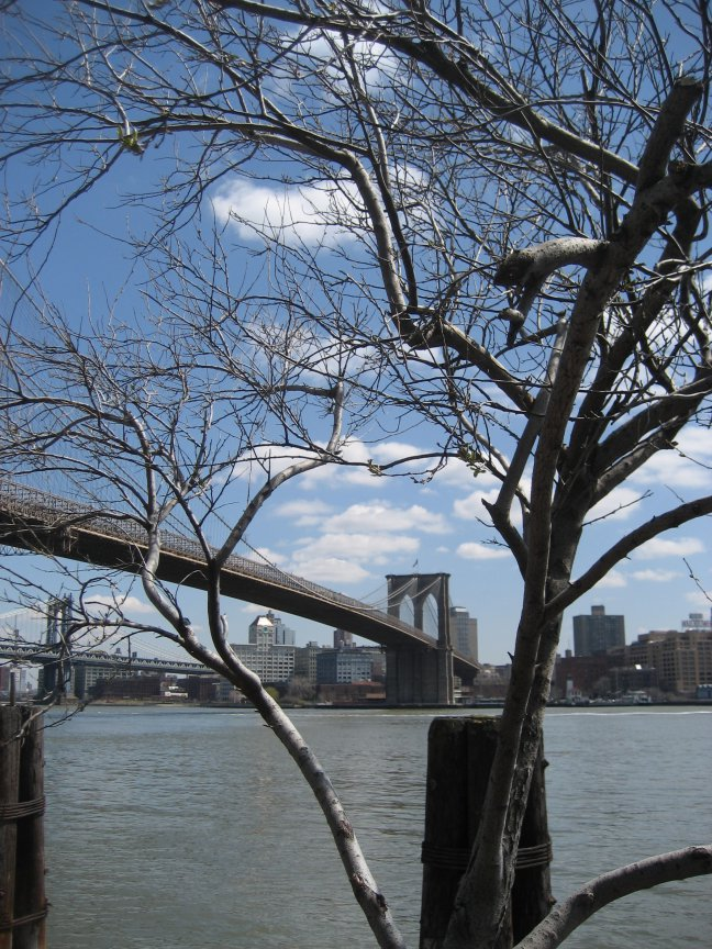 Brooklyn Bridge op afstand