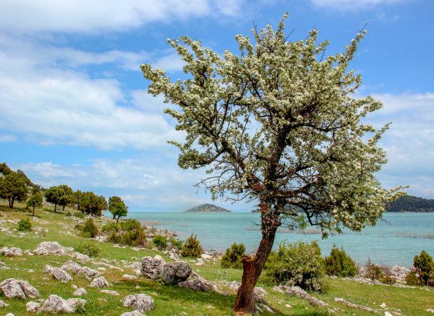 Bezoek het meer van  Egirdir