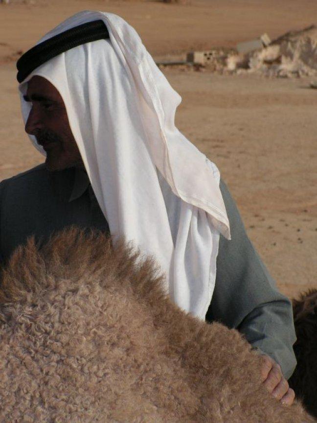Man aait kameel