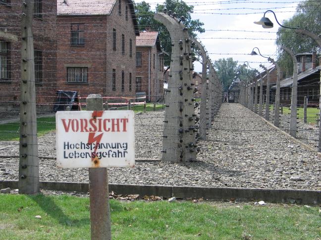 Gevangen in Auschwitz