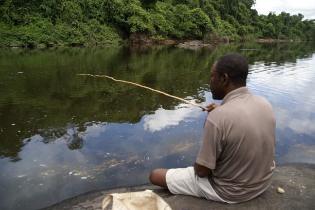 Vissen op Piranha / Piering