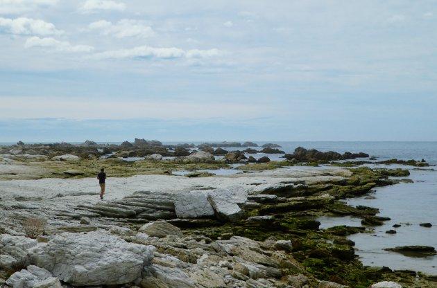 Ruwe kust van Kaikoura