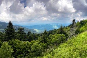 Panorama Mount Mitchel