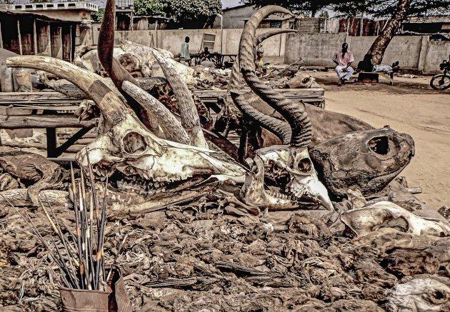 Voodoo markt bezoeken