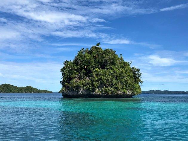 Rock eilandje