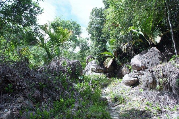 Mooie trail over het eiland
