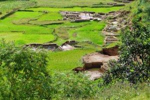 Stenenbakkerij in het groen