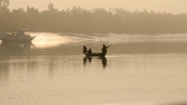 Ontwaken in de Sundarbans.