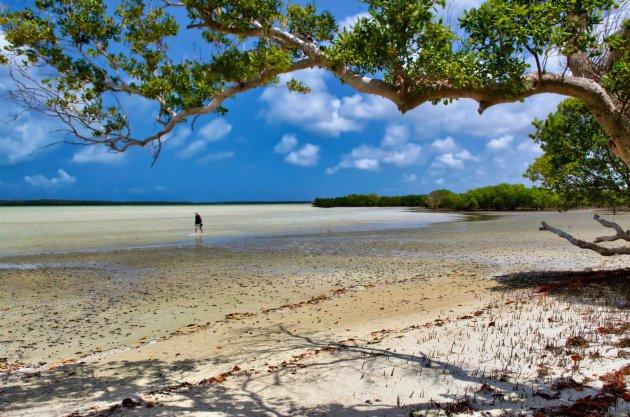 De eenzame wandelaar op het bounty strand