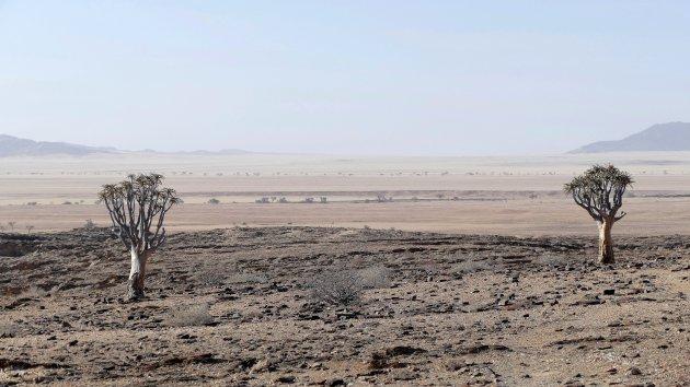 Woestijn in Namibie
