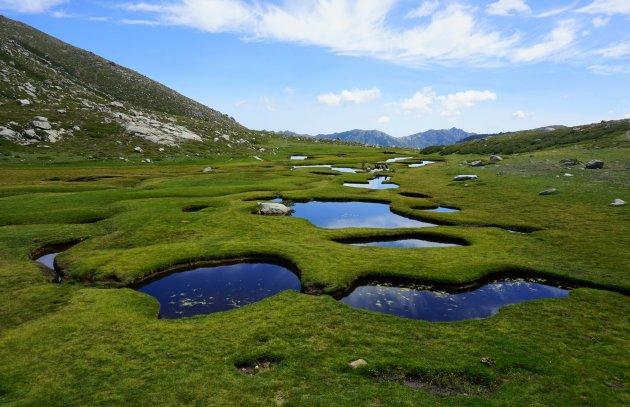 De pozzines van Corsica