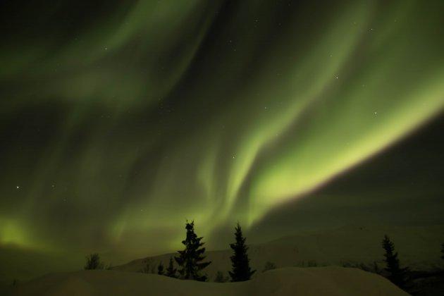 Noorderlicht show Tromso