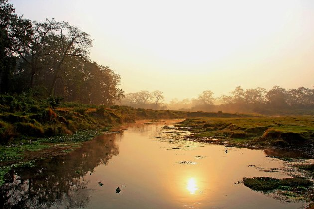 Chitwan early in the morning