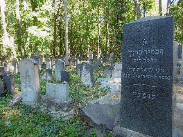 begraafplaats Prenzlauer Berg