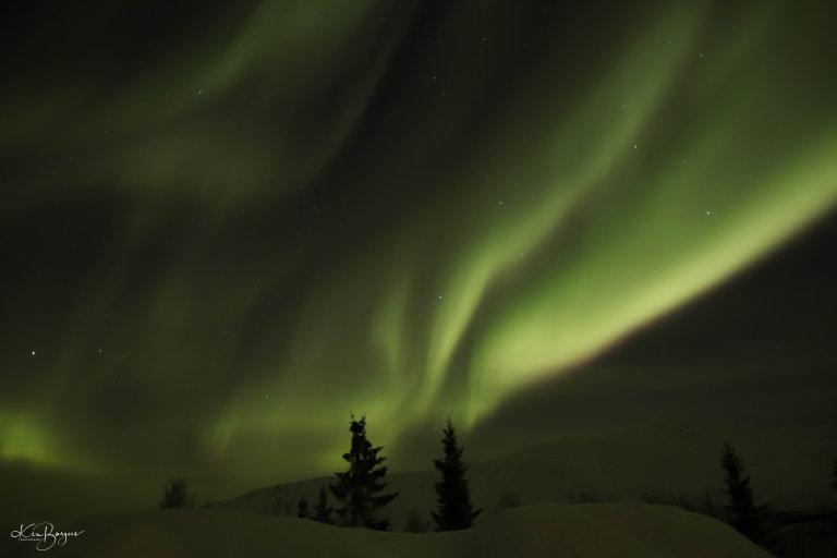 Hoofdfoto bij reisverhaal 'Wintervakantie Tromso en Senja'