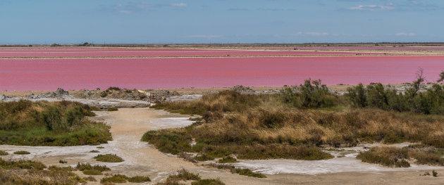 De zoutvlaktes van de Camargue