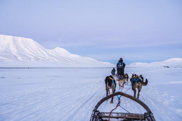 Met snelheid over het winterse landschap van Spitsbergen