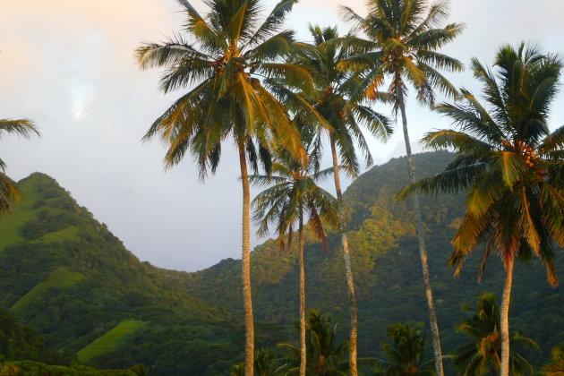 Veranderen de Cookeilanden van naam?