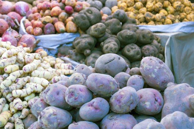 Land van aardappelen