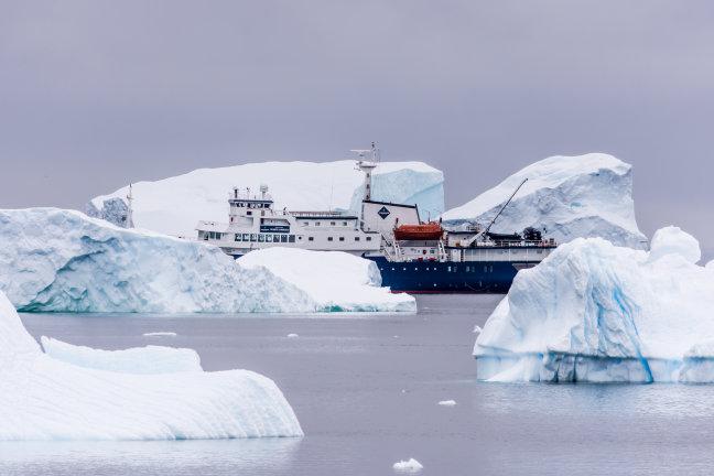 Verscholen tussen de ijsschotsen