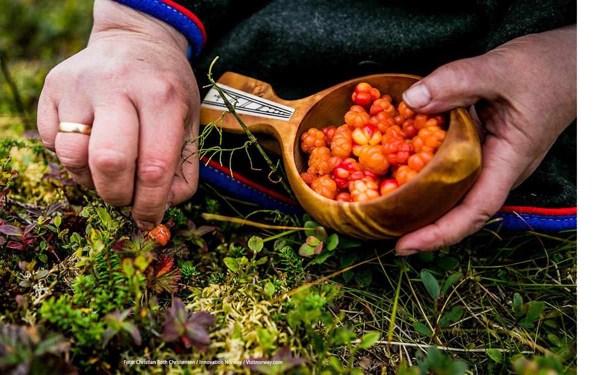 """<p>In de herfst springen de kleuren eruit. D&eacute; tijd om bessen en paddenstoelen te plukken en het eerste noorderlicht te spotten. En perfect voor een citytrip! Wil jij jouw eigen Norway Story delen? Doe <a href=""""http://columbusmagazine.nl/visit-norway#win"""">hier</a> mee met onze winactie!</p> foto"""
