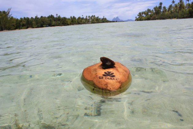 Snorkelparadijs
