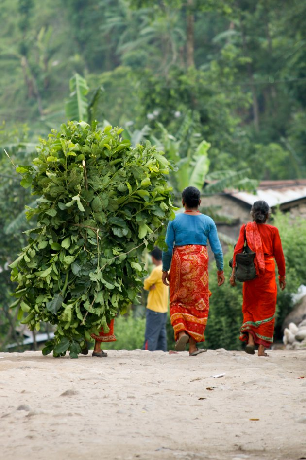 Weg van het drukke Kathmandu