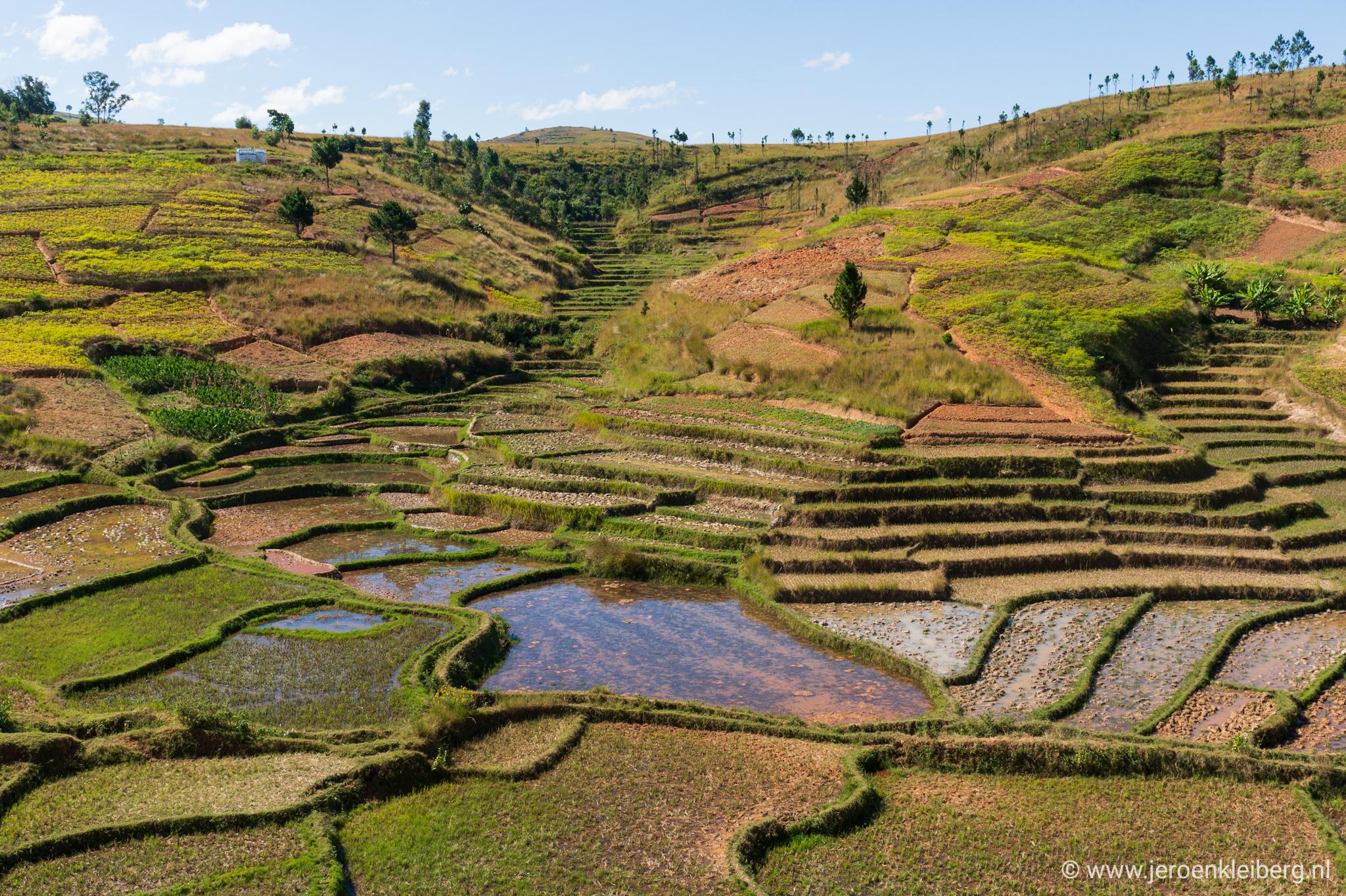 Fietsen tussen rijstvelden en bakstenen