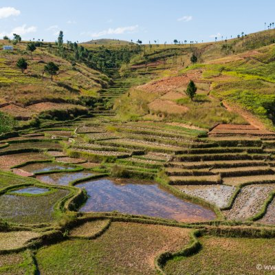 Voorvertoning Fietsen tussen rijstvelden en bakstenen