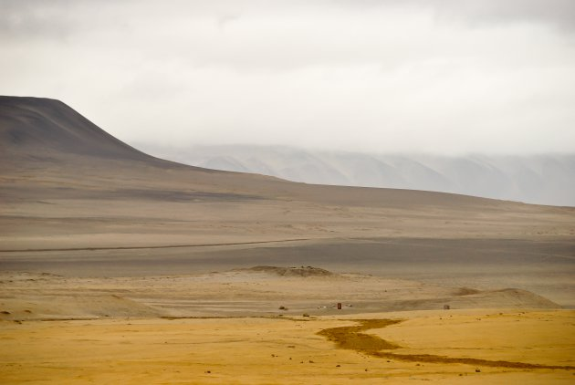 Peruaanse zandheuvels in Paracas NP