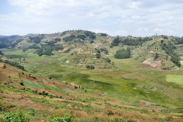 Onderweg naar Bwindi NP