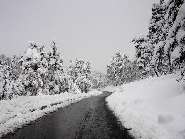 Weg door de sneeuw naar de Mont Ventoux