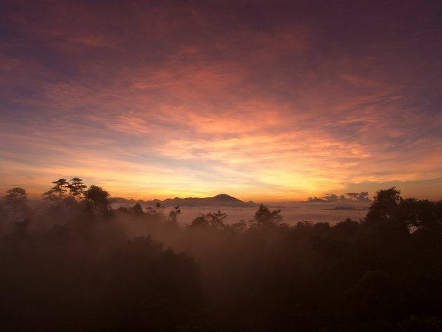 Zonsopkomst Danum Valley, Borneo, Maleisië