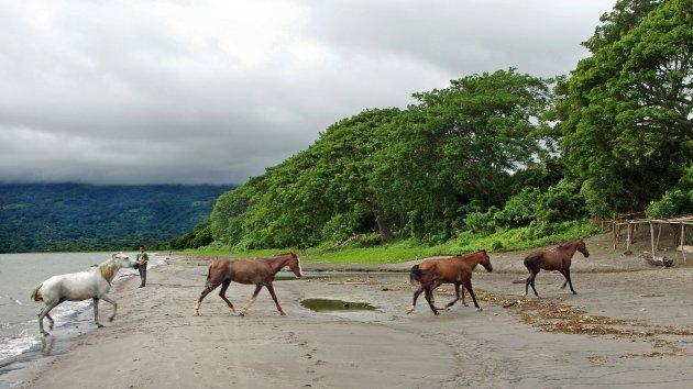Tijd tekort op Isla de Ometepe