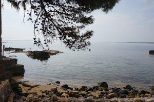 Natuurgebied