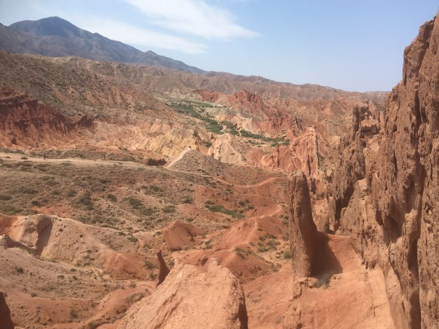 The Lonely Canyon