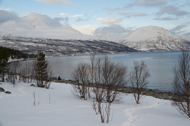 Winters fjord