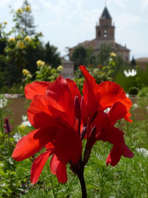 tuin van Alhambra