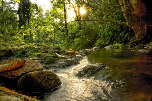 genieten van ongerepte natuur