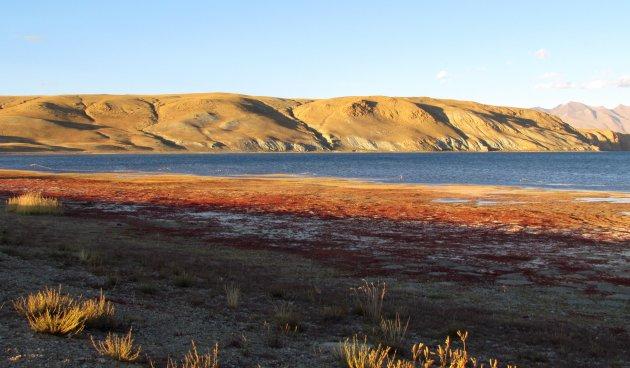 Manasarovar meer