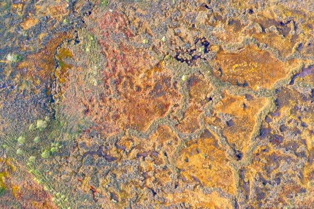 Luchtfoto van een moeraslandschap