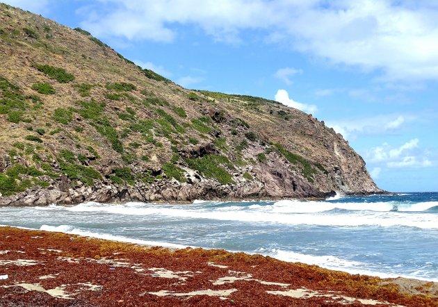 Concordia Bay