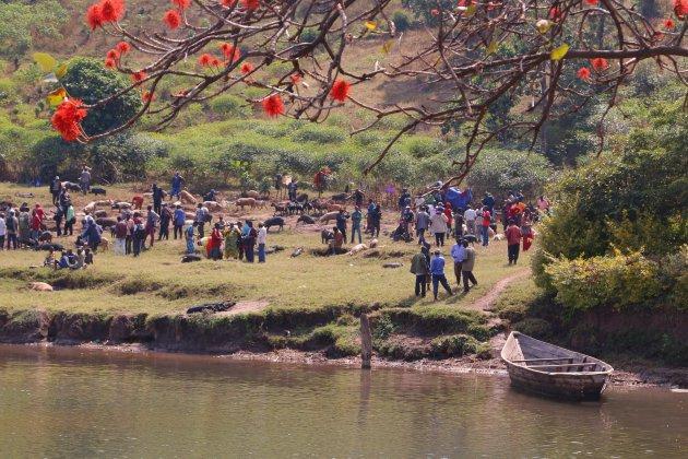 Karongi, veemarkt aan het meer