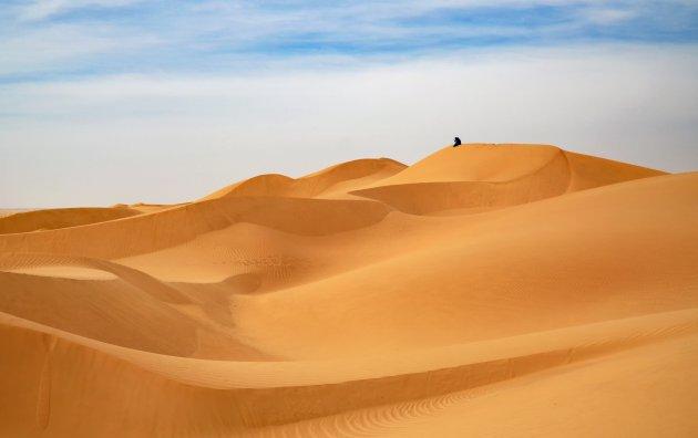 Oneindige leegte in de Rub al Khali