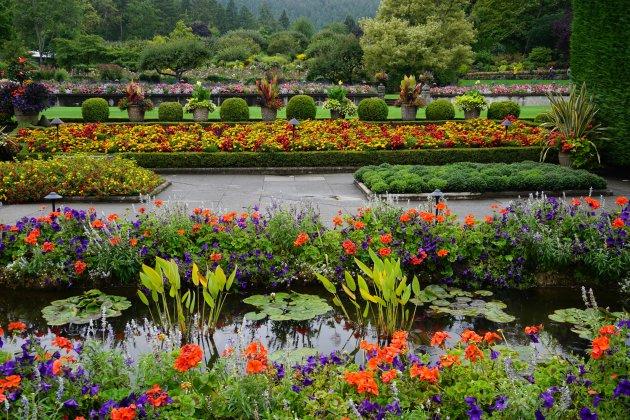 Bloemenpracht in Butchart Gardens