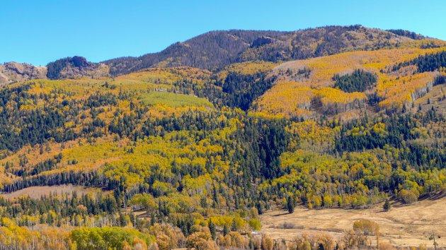 Herfst in Colorado