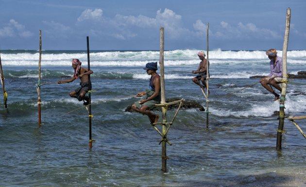 Stilt Fishermen Koggala