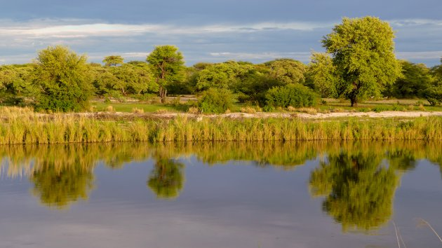 Ochtendlicht in de Okavango Delta