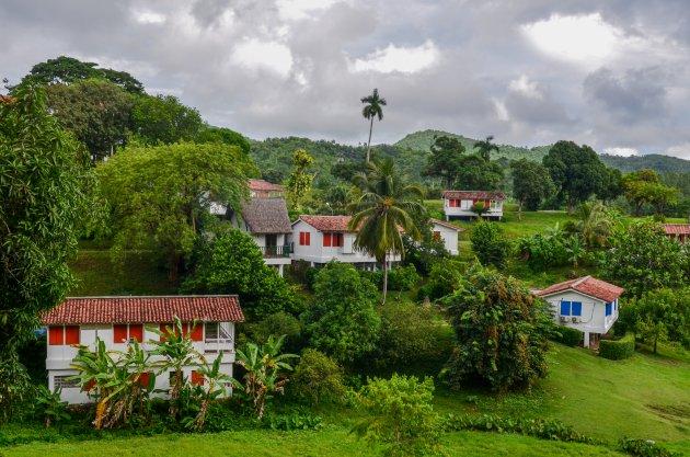 Cuba's groene hart